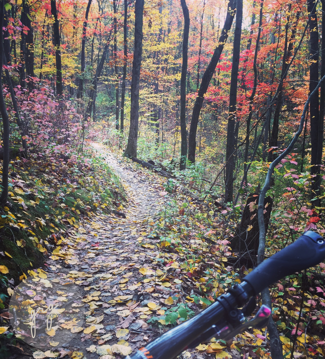 4 Fantastic Grand Rapids Mountain Bike Trails